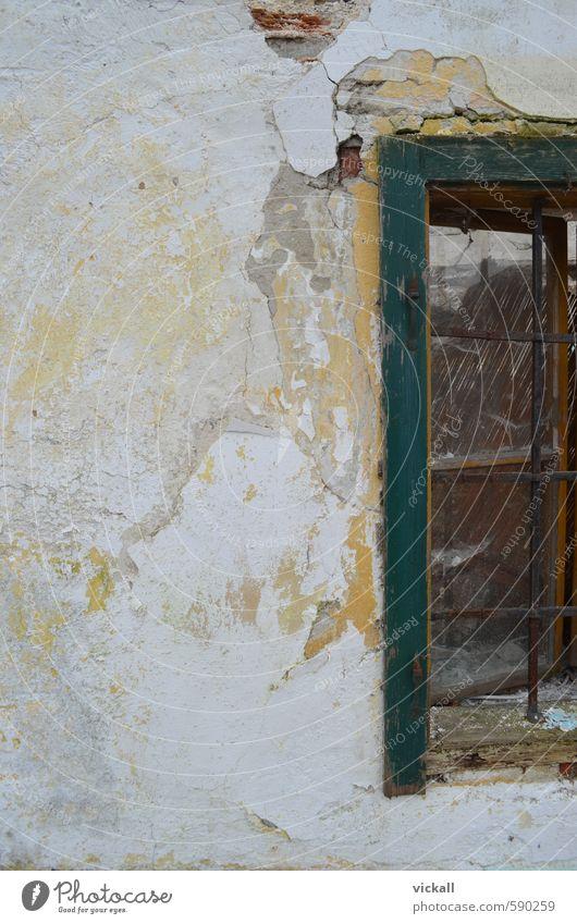 Ruine Forsthaus alt Haus Wand Gebäude Mauer Autofenster Europa Ruine Österreich Gitter