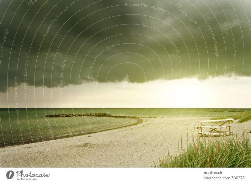 Kalifornien. Natur Ferien & Urlaub & Reisen Wasser Sommer Meer Wolken Strand Ferne Küste Freiheit Schwimmen & Baden Stein Sand hell Wetter Wind