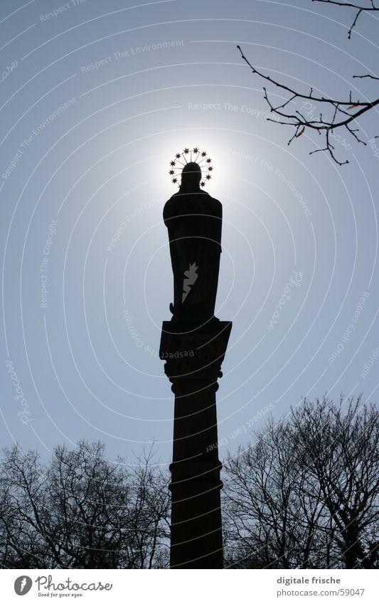 Korona Himmel Winter Garten Park Stern (Symbol) Statue Baumkrone Säule Düsseldorf Maria Gotteshäuser