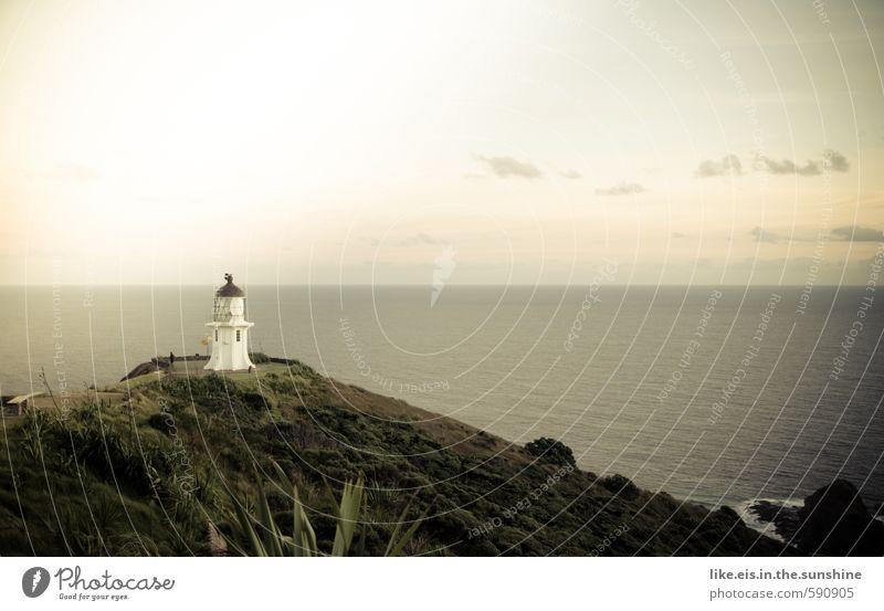 neuseelands nördlichster punkt Natur Ferien & Urlaub & Reisen Pflanze Meer Erholung Einsamkeit Landschaft ruhig Ferne Umwelt Gras Küste Freiheit Felsen Wellen