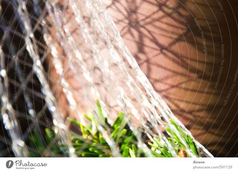 Christo-Baum Pflanze Winter Zweig Tanne Tannenzweig Nadelbaum Menschenleer Mauer Wand Verpackung Kunststoffverpackung Netz Netzwerk glänzend schön grün rot weiß
