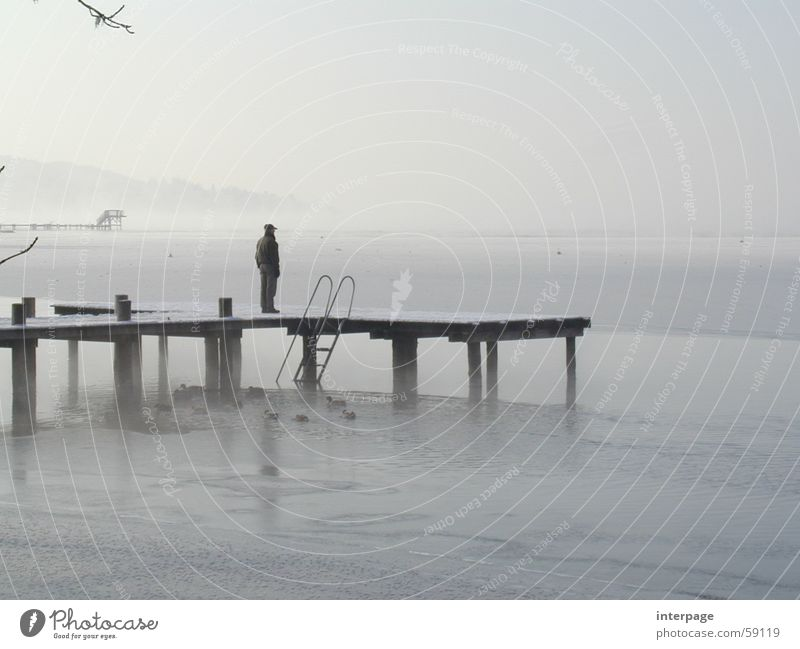 Blick in die Ferne Mensch Mann Einsamkeit grau See Eis Steg Bayern Starnberg Ammersee Herrsching am Ammersee