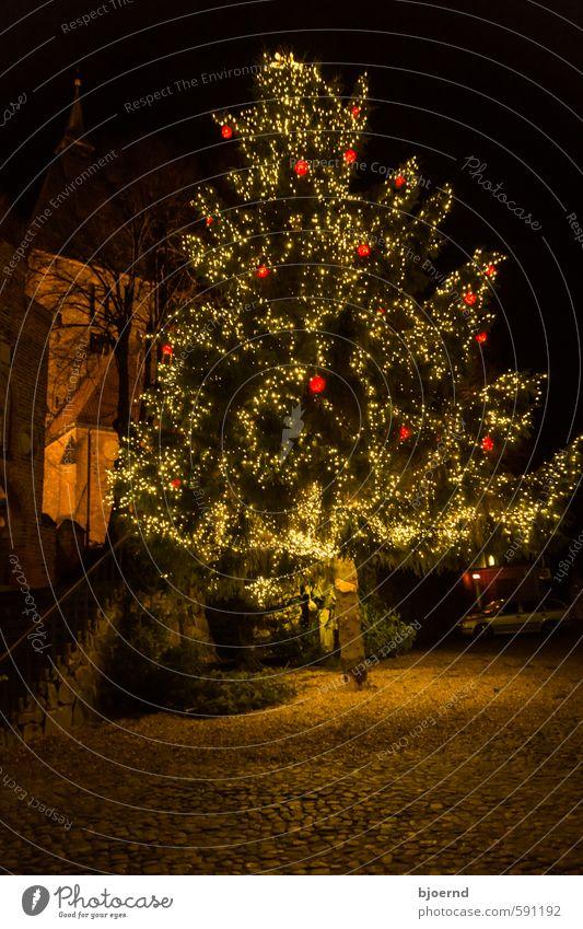 Weihnachtsbaum Natur Winter Baum Kleinstadt Stadtzentrum Altstadt Kirche Weihnachten & Advent Feste & Feiern träumen warten gelb gold grün orange rot schwarz