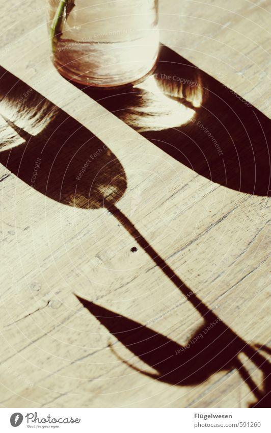 Stilllebenschatten Lebensmittel Ernährung Getränk Geschirr Schalen & Schüsseln Glas elegant Tisch Schatten Schattenspiel Schattenseite Schattendasein