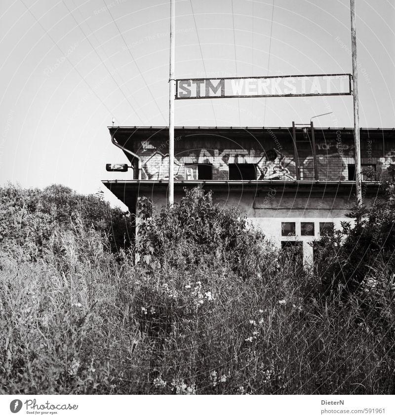Werkstatt Stadtrand Menschenleer Industrieanlage Gebäude Fassade Beton Stahl Schriftzeichen Graffiti grau schwarz weiß Ruine Gras Oberleitung analog