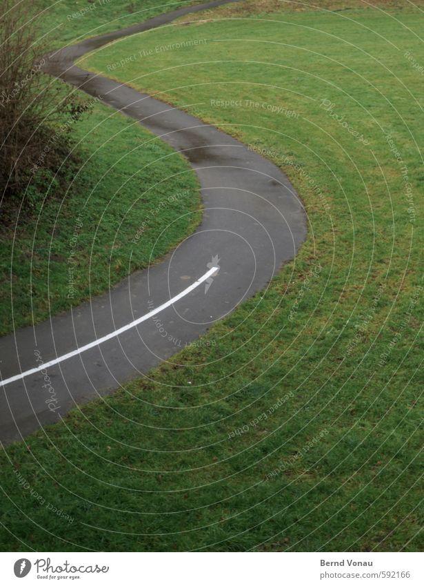 S Regen Gras Sträucher Wege & Pfade Fahrradweg grau grün schwarz weiß Schilder & Markierungen Markierungslinie Bogen Kurve Buchstaben schwungvoll aufwärts