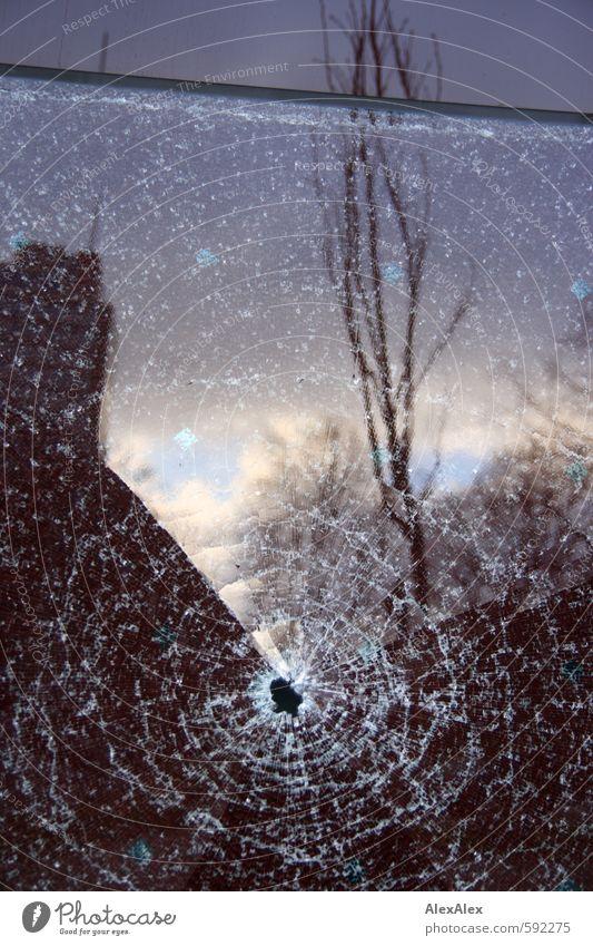 Ich war's nicht! Himmel Wolken Baum Stadt Menschenleer Hochhaus Mauer Wand Fensterscheibe Fassade Loch Steinschlag Reflexion & Spiegelung Glas kaputt trist