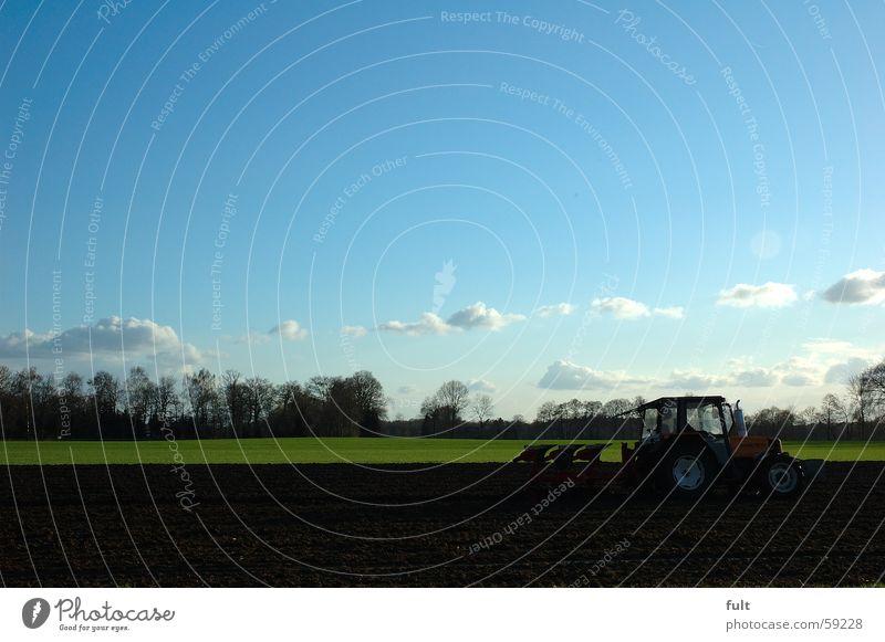 landwirtschaft Landwirtschaft pflügen Traktor Feld Horizont Baum Wolken träcker Himmel