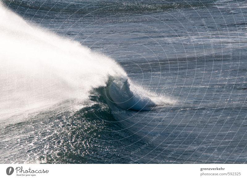 Wellenmonster Wasser Sturm Küste Meer Mittelmeer Respekt Kraft tosend Wellenbruch Wellengang Farbfoto Außenaufnahme Menschenleer Textfreiraum rechts
