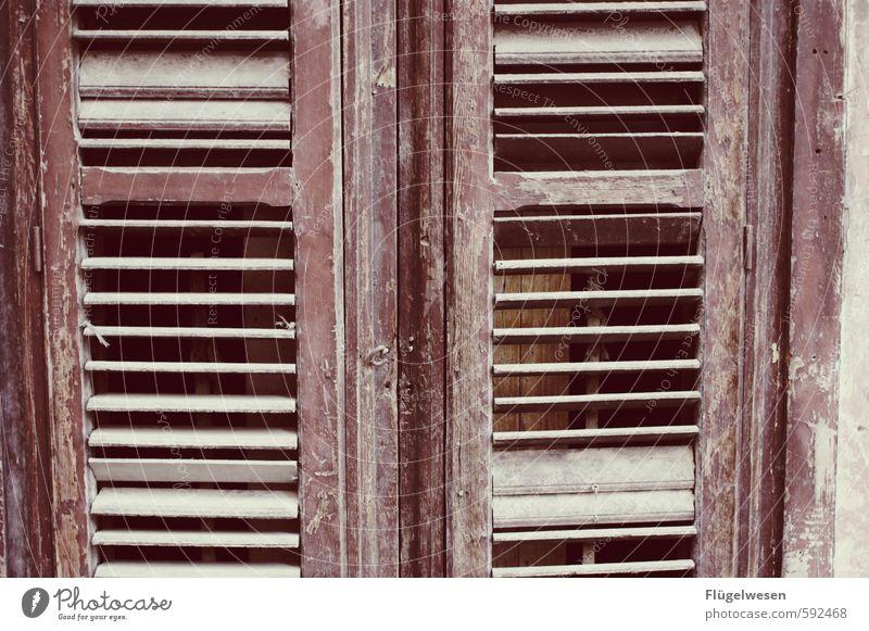 Fensterläden gibts in Fensterläden Haus Autofenster Abteilfenster Flugzeugfenster Wohnung offen Häusliches Leben geschlossen Sicherheit Fensterscheibe direkt