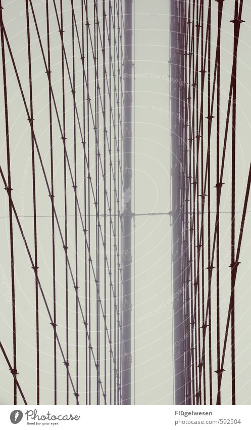 Brooklyn Bridge bei Nebel II Ferien & Urlaub & Reisen Stadt Winter Ferne Bewegung Freiheit Wetter Regen Tourismus Klima Ausflug Brücke Abenteuer Skyline