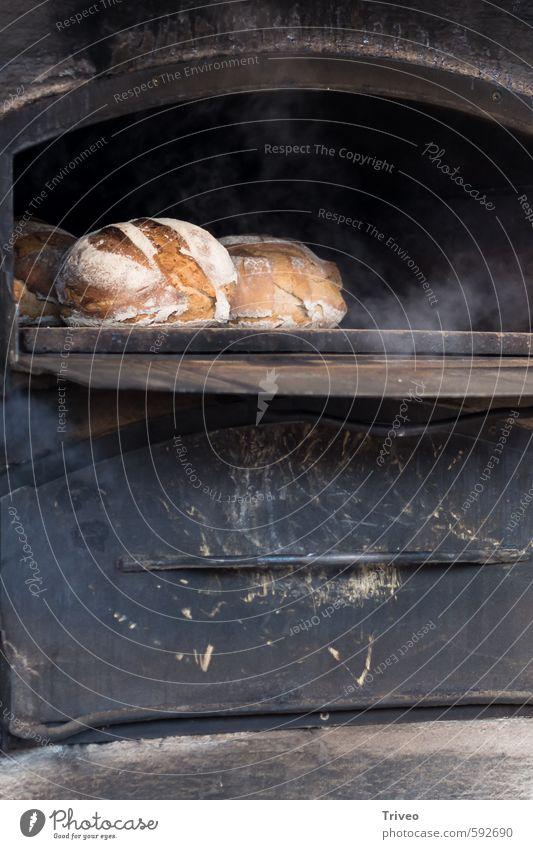 Kleine Brote backen Gesunde Ernährung Glück Essen Stimmung Lebensmittel frisch Warmherzigkeit Kochen & Garen & Backen Frühstück Tradition Geborgenheit Backwaren