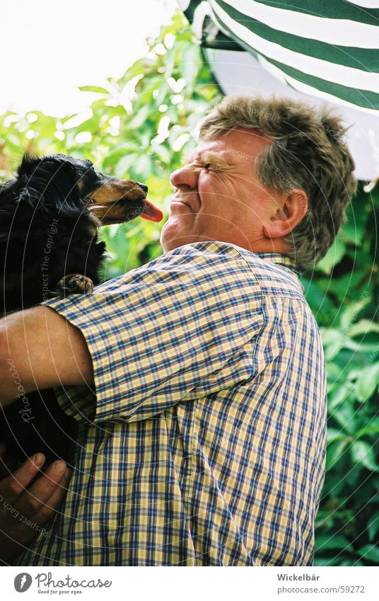 Schlabberkuss Mann Hund Freundschaft Küssen Ekel Zunge Dackel