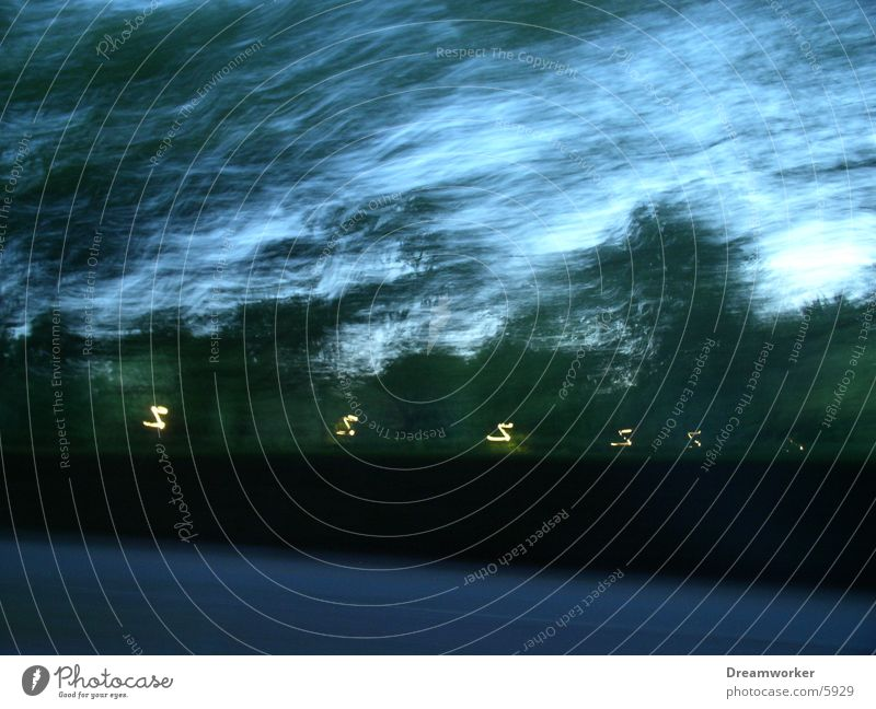blaue Strasse Baum Straße Geschwindigkeit Asphalt Straßenbeleuchtung Allee unterwegs