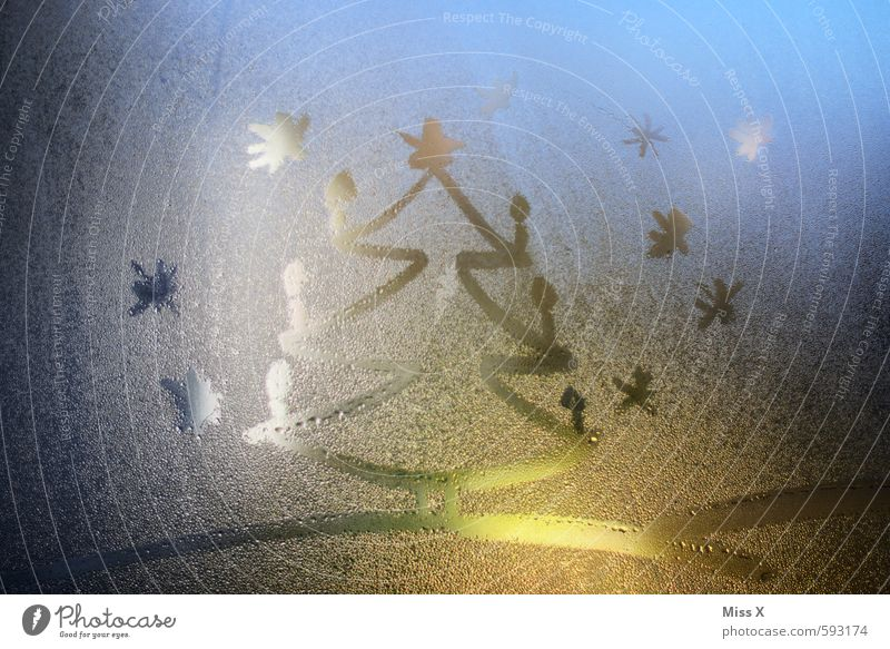 Weihnachtsbaum Weihnachten & Advent Wasser Wassertropfen Nachthimmel Winter Eis Frost Schnee Schneefall Fenster leuchten Kerze Weihnachtsbeleuchtung