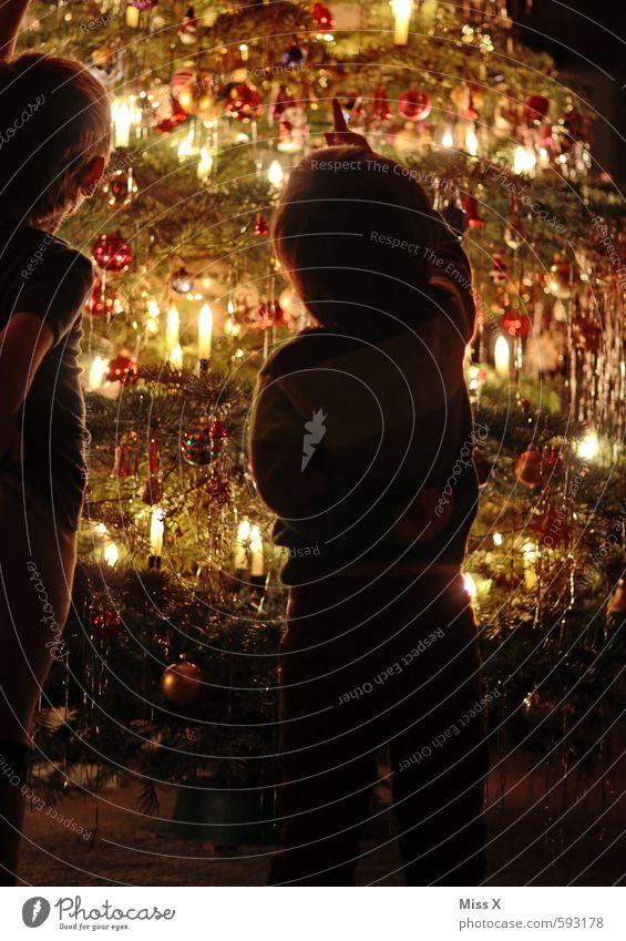 Die Zwei vorm Baum Mensch Kind Weihnachten & Advent Baum Freude Gefühle Glück Feste & Feiern Stimmung leuchten Kindheit hoch Fröhlichkeit Kindheitserinnerung zeigen Weihnachtsbaum