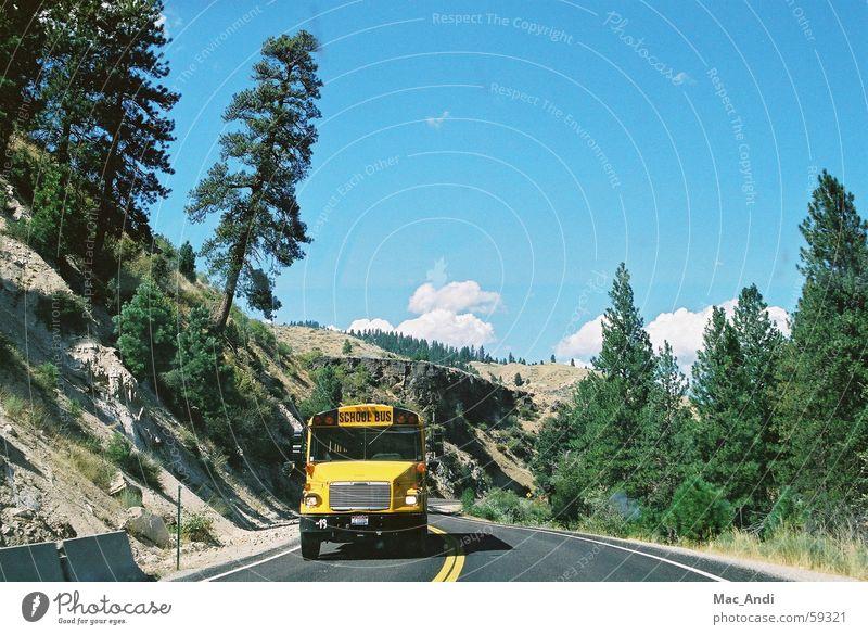 Schoolbus Straße USA Schulbus Idaho