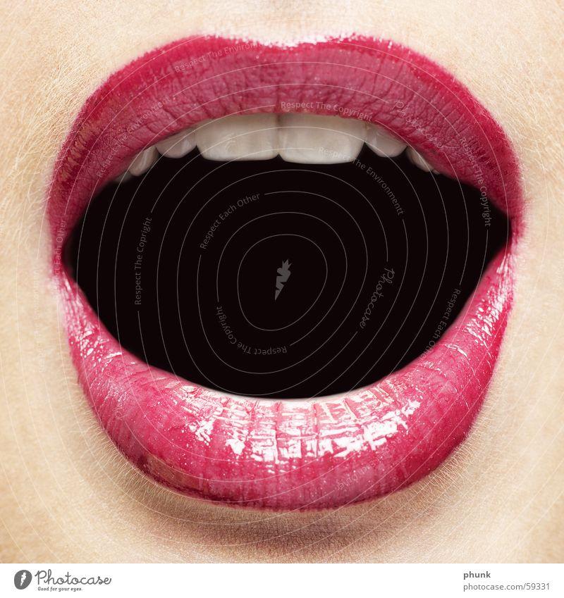 lippencloseup Frau rot feminin Haare & Frisuren rosa gefährlich weich Zähne Lippen Küssen Alkoholisiert extrem Lippenstift Aufgabe verführerisch knackig