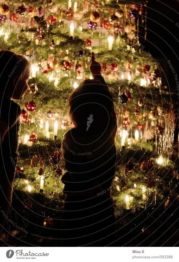 Papas Weihnachtsbaum Mensch Kind Weihnachten & Advent Baum Gefühle Glück Stimmung Freundschaft Zusammensein glänzend Kindheit leuchten Lebensfreude Neugier
