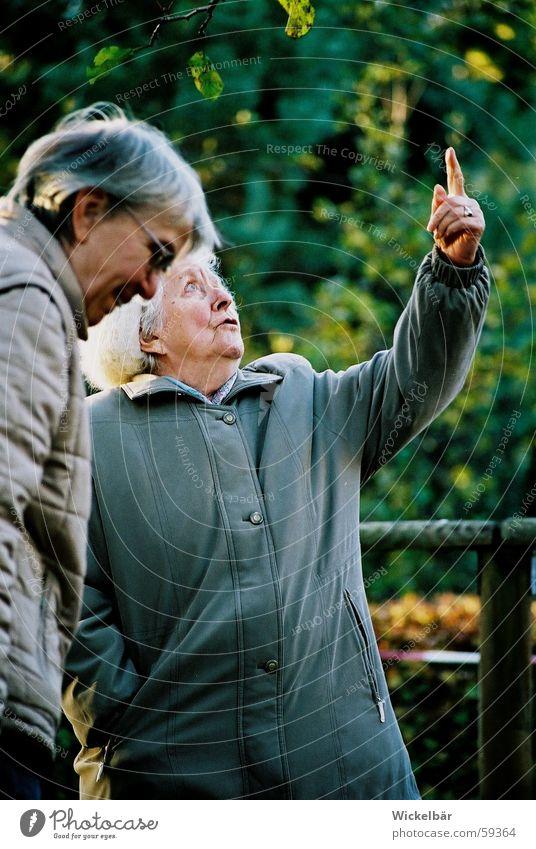 Unser Storchenpaar kommt zurück! Himmel Vogel Finger Spaziergang Familie & Verwandtschaft Großmutter Großeltern entdecken Richtung zeigen
