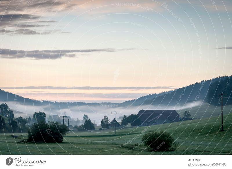 Früh Tourismus Ausflug Strommast Natur Landschaft Urelemente Himmel Horizont Sommer Schönes Wetter Nebel Baum Sträucher Wiese Wald Hügel Haus frisch schön