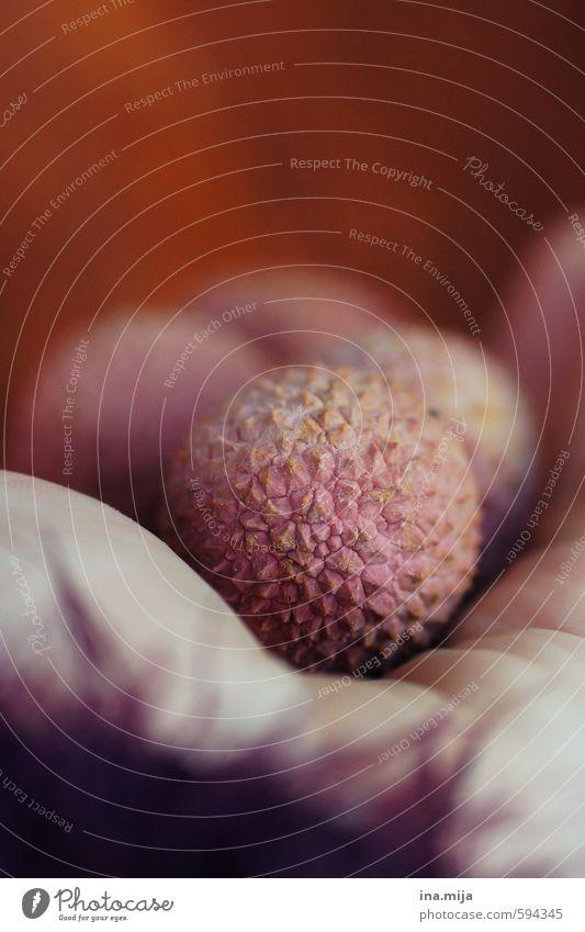 eine Handvoll Litschis Lebensmittel Frucht Ernährung Bioprodukte Vegetarische Ernährung Diät braun gelb orange rosa rot Lychee Südfrüchte Gesunde Ernährung