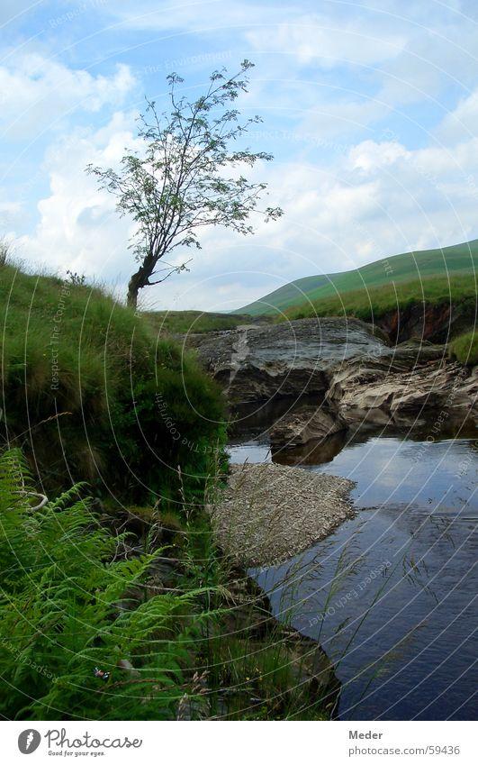 Waliser Idylle Natur Wasser Himmel Baum grün blau Sommer Ferien & Urlaub & Reisen ruhig Wolken Erholung Wiese Gras Berge u. Gebirge Freiheit Stein