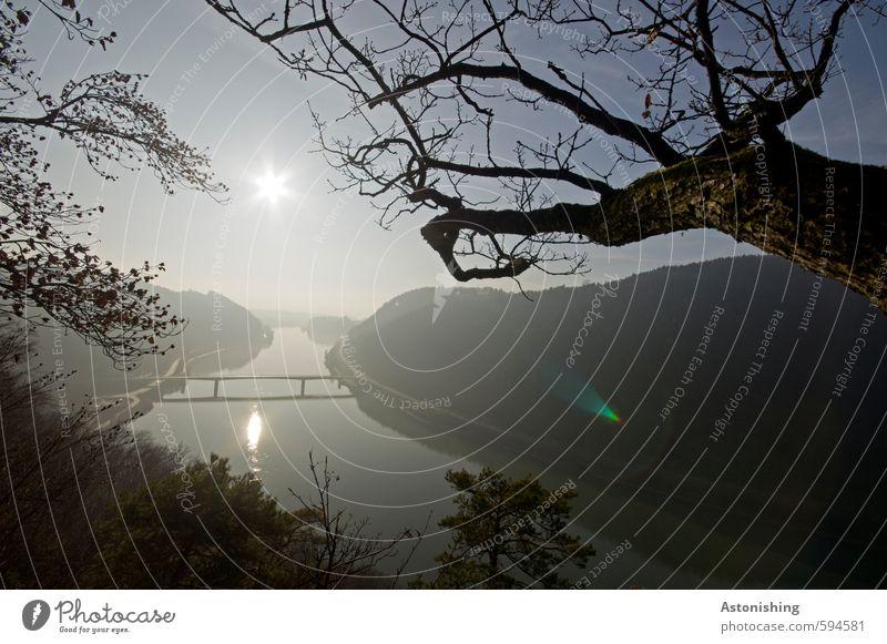 # 500 - und noch ist nicht aller Tage Abend Umwelt Natur Landschaft Pflanze Wasser Himmel Wolkenloser Himmel Horizont Sonne Sonnenaufgang Sonnenuntergang