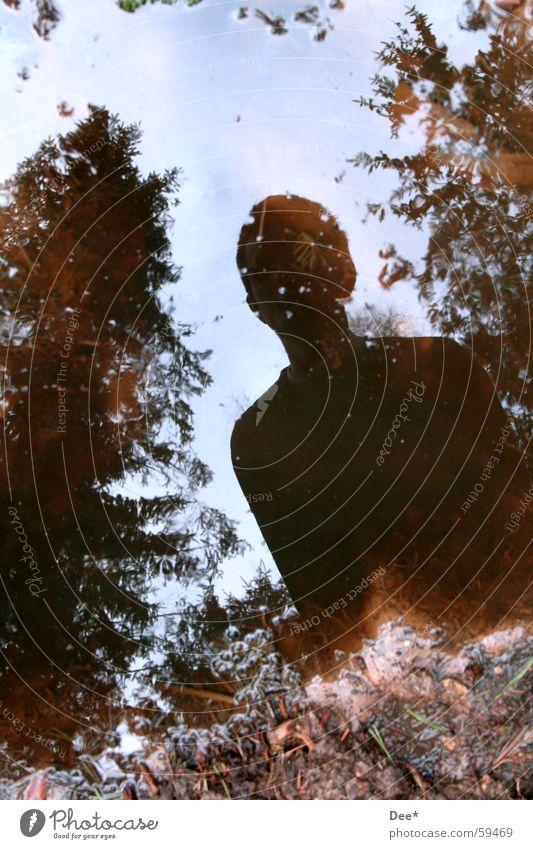 Wo ist die Fotografin? Reflexion & Spiegelung Pfütze dreckig Schlamm Baum Mann Wolken grün braun weiß Sonnenlicht Licht schwarz dunkel Wasser Mensch Himmel blau