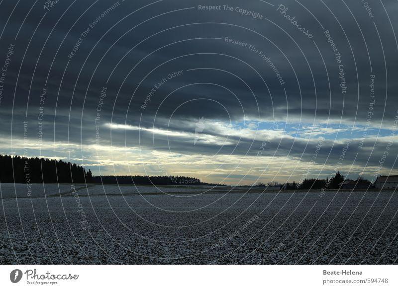 Erstes 2014 | der Tag erwacht Himmel Natur blau weiß Erholung Landschaft ruhig Wolken Haus Winter schwarz dunkel Wald Umwelt Schnee Wege & Pfade
