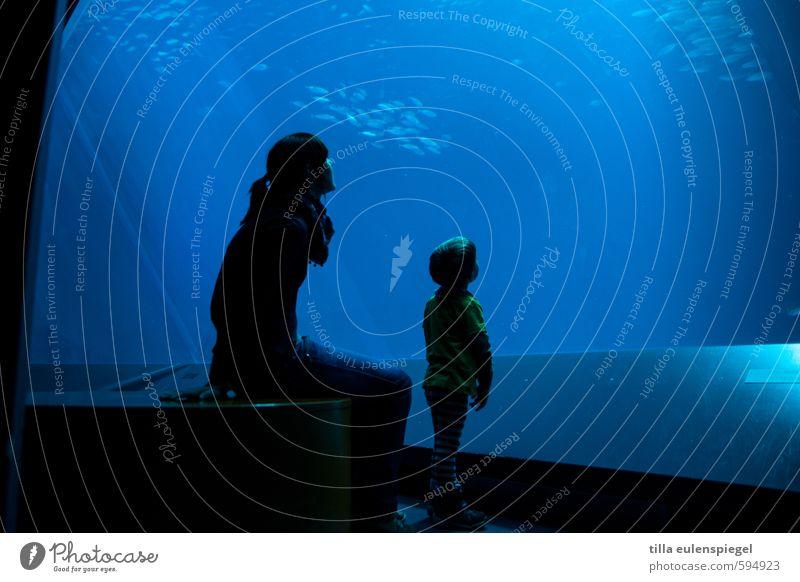 Gute Aussichten für 2014!? Mensch Frau Kind Jugendliche blau Wasser Junge Frau ruhig Erwachsene Leben feminin Familie & Verwandtschaft Freizeit & Hobby maskulin