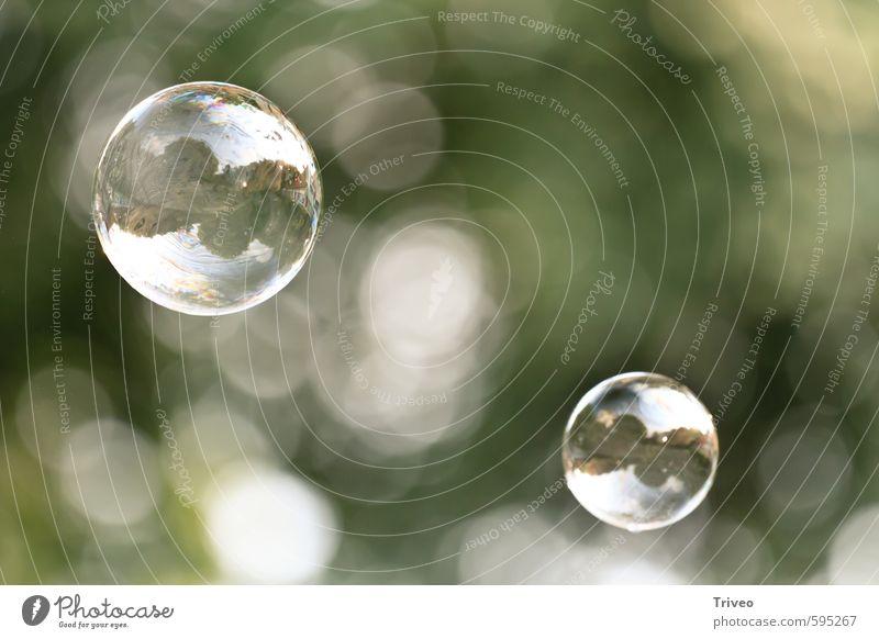 Seifenblasendoppelspiegel elegant Reinheit Luftverkehr Schweben grün frei Reflexion & Spiegelung Natur friedlich hellgrün Farbfoto Experiment