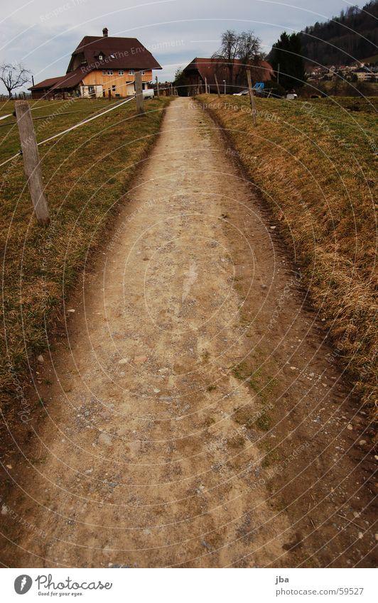 Feldweg Fußweg Gras Zaun Zaunpfahl Holz Haus Holzhaus Fenster Baum Weitwinkel Blick nach unten Wege & Pfade Straße Stein Erde zwickzaun Himmel Bodenbelag Kies
