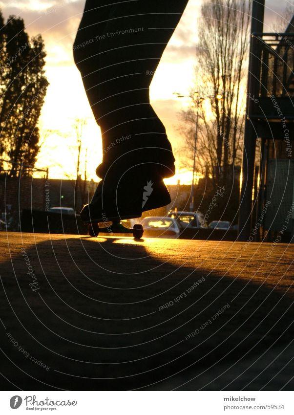 nose manual Skateboarding Sonnenuntergang nosemanual fun Coolness ocean