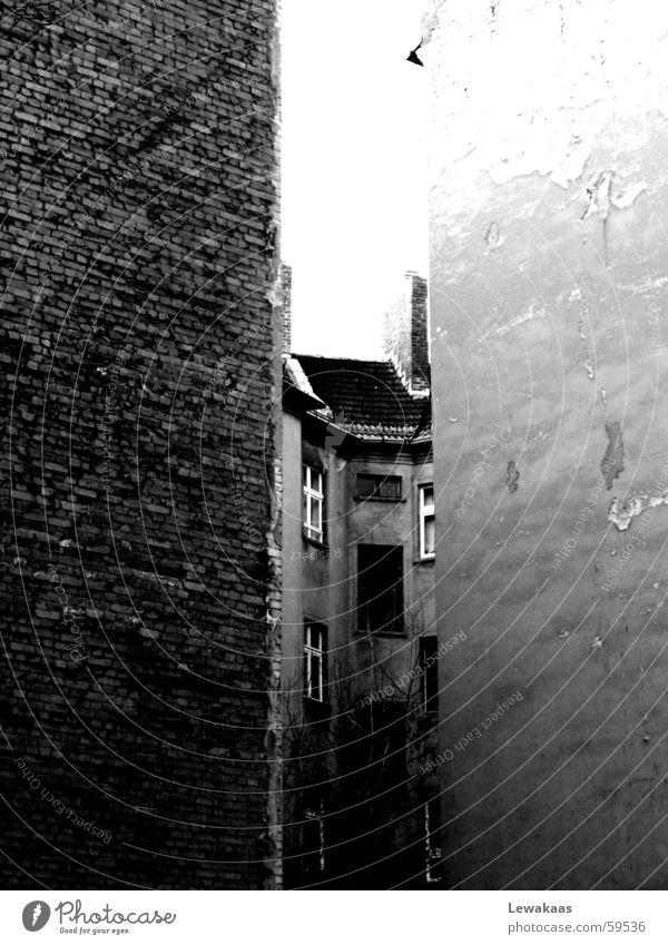 Eingekeilt alt weiß Haus schwarz Wand Fenster Stein Gebäude trist Baustelle Häusliches Leben Bauernhof Hinterhof karg rustikal