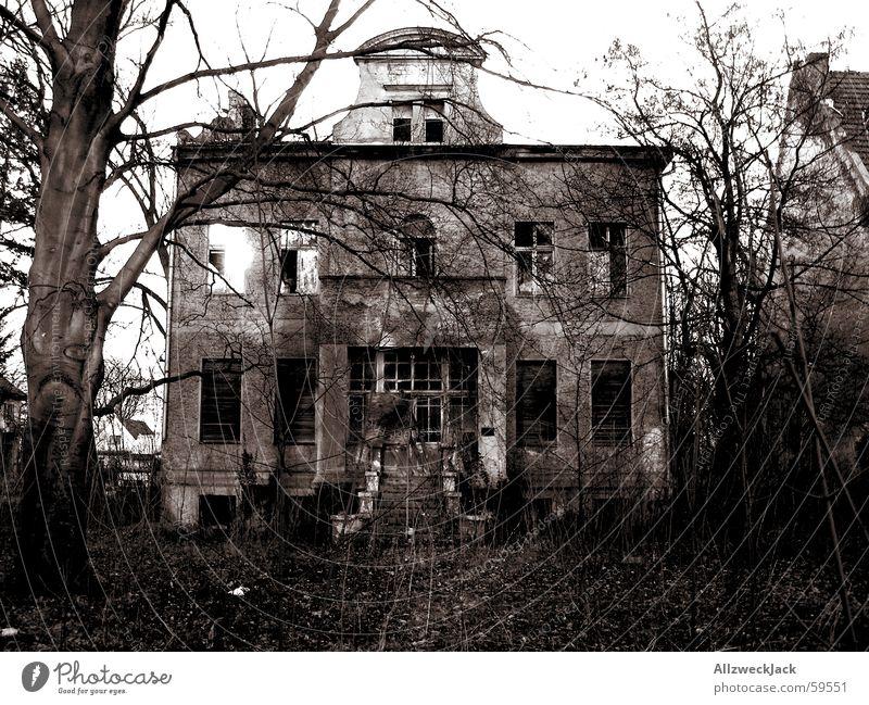 Der Untergang des Hauses Usher alt Haus Einsamkeit dunkel Traurigkeit Deutschland Europa Trauer Sträucher verfaulen gruselig verfallen Verfall Ruine schäbig
