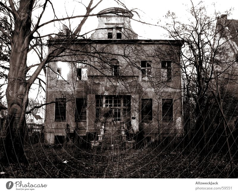 Der Untergang des Hauses Usher Villa verfallen Europa Brandenburg gruselig dunkel beängstigend Trauer Ruine Sträucher Anwesen Einsamkeit Verfall schäbig