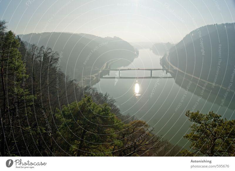 eine Brücke bauen Umwelt Natur Landschaft Pflanze Himmel Wolkenloser Himmel Horizont Sonne Sonnenaufgang Sonnenuntergang Herbst Wetter Schönes Wetter Baum Wald