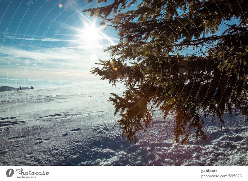 Winter kommt Umwelt Natur Landschaft Himmel Horizont Sonne Sonnenlicht Wetter Schönes Wetter Schnee Berge u. Gebirge kalt natürlich blau weiß Lebensfreude
