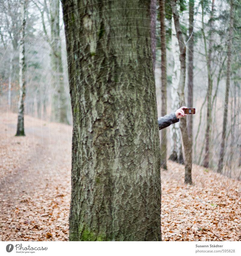 Lauschangriff Natur Baum Hand Winter Wald Wiese Herbst Arme Kommunizieren Zukunft Telefon Netzwerk Wissenschaften Handy hören Kontrolle