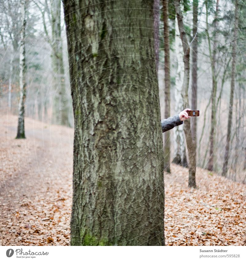Lauschangriff Telefon Handy Unterhaltungselektronik Wissenschaften Fortschritt Zukunft Arme Natur Herbst Winter Baum Wiese Wald Teleskop Netzwerk hören