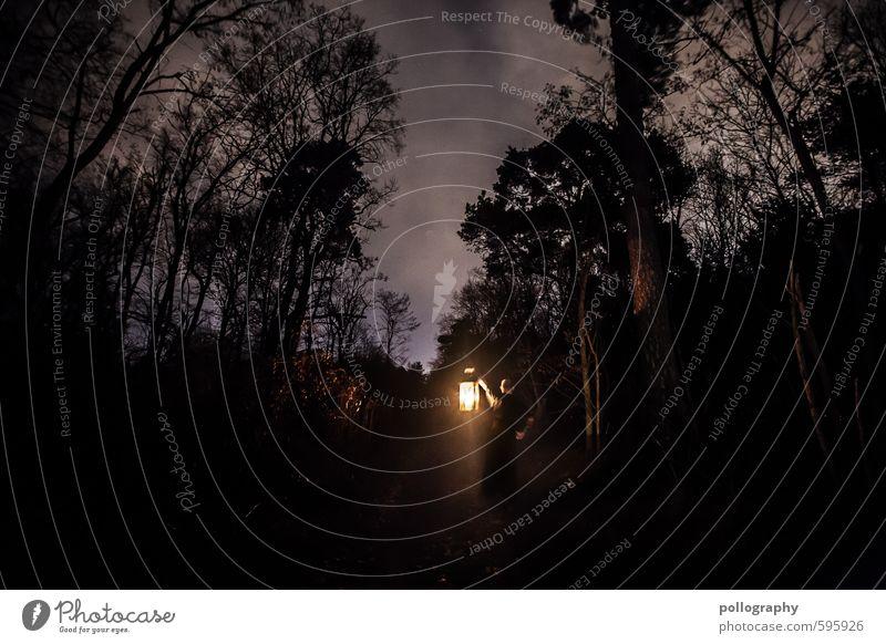 lantern (7) Mensch maskulin Junger Mann Jugendliche Erwachsene Leben Körper 1 18-30 Jahre Natur Landschaft Pflanze Himmel Wolken Herbst Winter Baum Sträucher