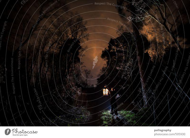 lantern (2) Mensch Himmel Natur Jugendliche Mann Pflanze Baum Einsamkeit Landschaft ruhig Wolken 18-30 Jahre Winter Junger Mann Wald Erwachsene