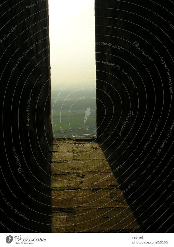 Und sie forschten in alten Gemäuern... Himmel ruhig Einsamkeit Ferne Erholung Mauer Feld Horizont Nebel groß Hoffnung Turm verfallen Aussicht Vergangenheit