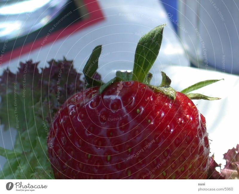 Erdbeere Ernährung Frucht Erdbeeren