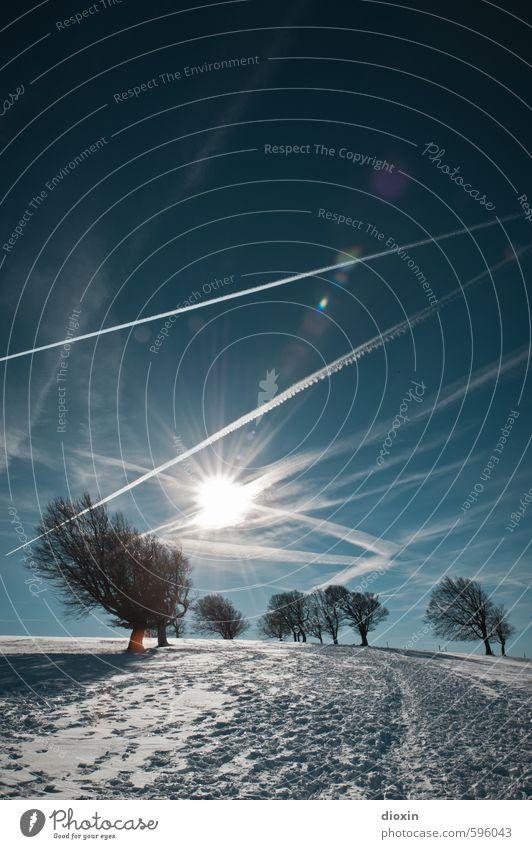 Erstes 2014 | Rückkehr zu den Wetterbuchen Himmel Natur Ferien & Urlaub & Reisen Pflanze Sonne Baum Landschaft Winter kalt Umwelt Berge u. Gebirge Schnee natürlich Wetter leuchten Klima