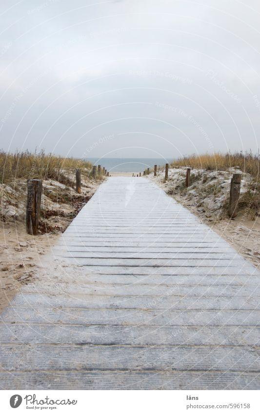 der Weg zu mir Himmel Natur Ferien & Urlaub & Reisen Wasser Meer Erholung Einsamkeit Landschaft Wolken Strand Winter Umwelt Wege & Pfade Gras Küste Sand