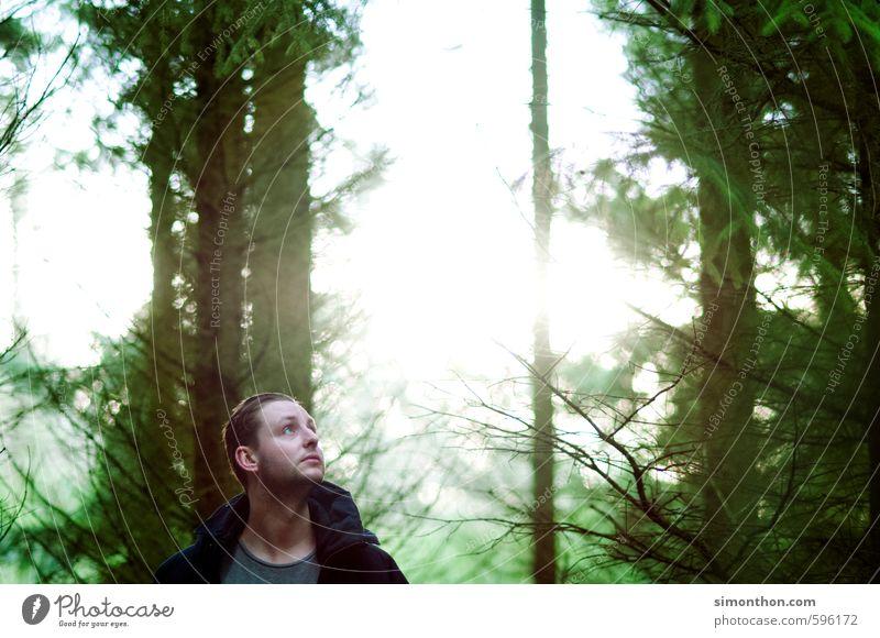 Im Wald Mensch Natur Ferien & Urlaub & Reisen ruhig Ferne Umwelt Berge u. Gebirge Leben Wege & Pfade Glück Religion & Glaube Freiheit maskulin Freizeit & Hobby