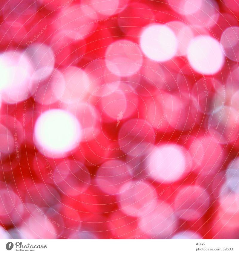 viel rote runde Punkte was Unschärfe Licht weiß violett rosa Kreis entdecken blind Optiker Brennweite Vitamin ist das Brennpunkt Makroaufnahme Detailaufnahme