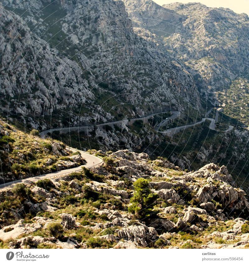 Bergauf oder bergab ? Natur Ferien & Urlaub & Reisen grün Sommer Baum Einsamkeit Ferne Berge u. Gebirge Umwelt grau Felsen Sträucher Tourismus Schönes Wetter Urelemente Abenteuer